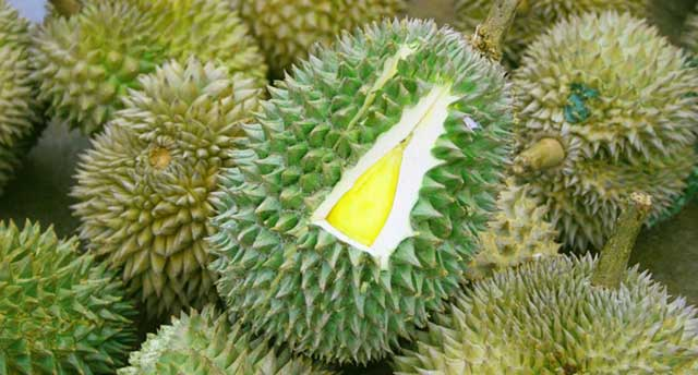 Thailand is now making Durian-flavored condoms